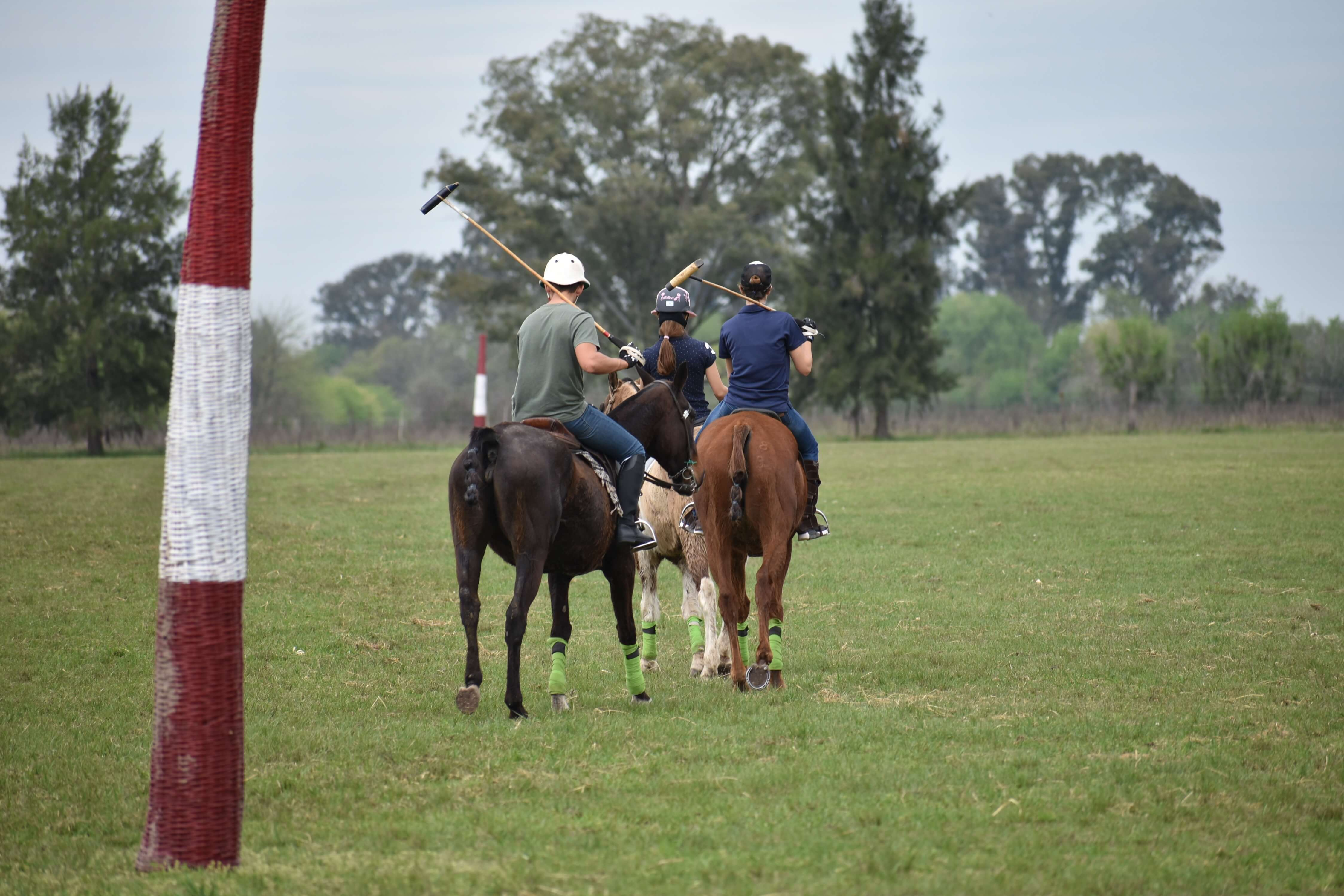 LEARN TO PLAY POLO IN ARGENTINA